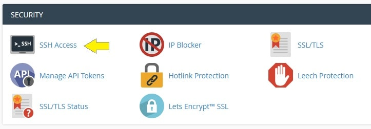 cPanel Security SSH Access